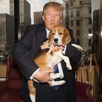 Donald Trump si un catel