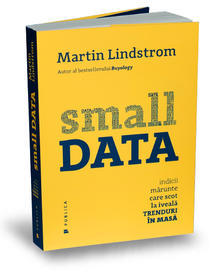small-data-martin-lindstrom