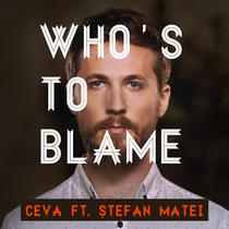 "Stefan Matei in clipul ""Who's To Blame"""