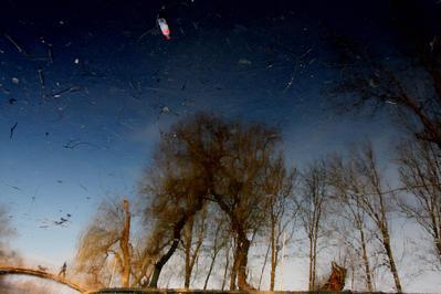 Lumea pe dos (1) - Bucuresti, Februarie 2008