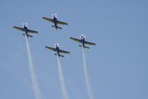 Galerie foto: Miting aviatic Mangalia august 2008