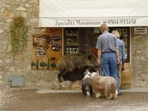 specialitati in Toscana