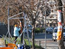 Afisele PD-L, lipite pe copaci in sectorul 3