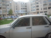 Dacia depozit