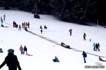 Turisti pe partie
