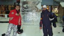 Ciprian Staicu si Adrian Stramatararu la CM din Dubai 2008