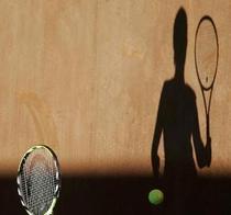Romania si-a aflat adversarele la Fed Cup