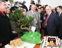 Bonsai si tort Ion Iliescu