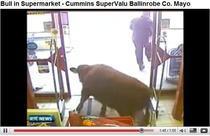 Taurul in supermarket