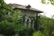 Casa din Kiseleff 35-37 (1)
