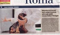 Ziarul Il Giornale