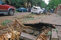 """""""Borduriada"""" a pregatit copacii pentru dezastrul din Bucuresti"""