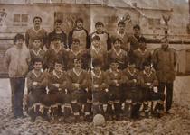 Unirea Urziceni, istoria unui club de fotbal