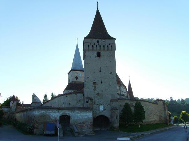 Cetatea din Moşna