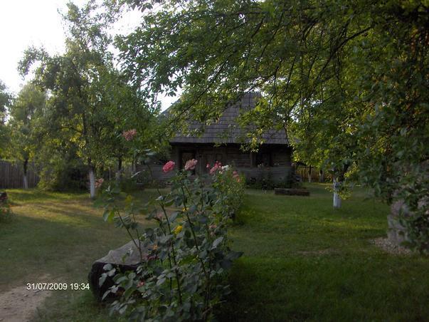 Casa memoriala Constantin Brancusi
