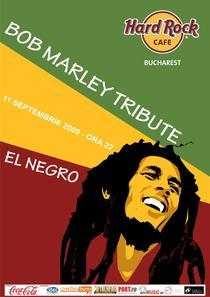 afis Bob Marley Tribute