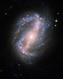 Galaxia spiralata NGC 6217