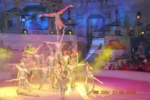Artisti acrobati