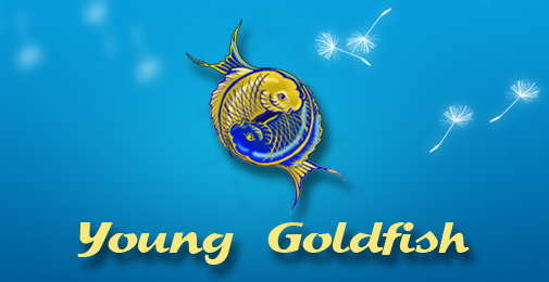 young goldfish