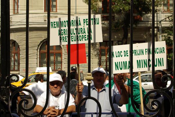 Protest al agricultorilor [3]