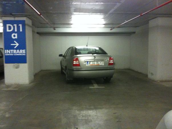 Bizonul a parcat