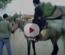 Calul naravas