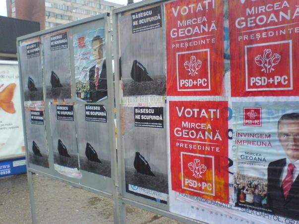 Campanie murdara la Timisoara