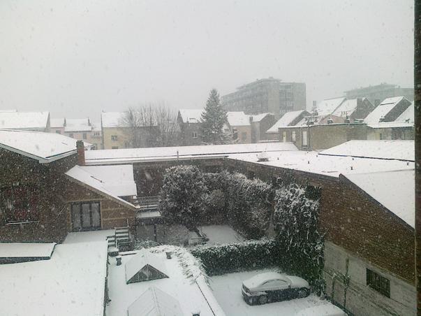 Ninge in Bruxelles (2)