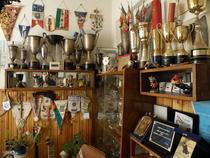Sala de trofee a lui Ion Panturu