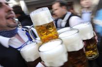 Halbe de bere
