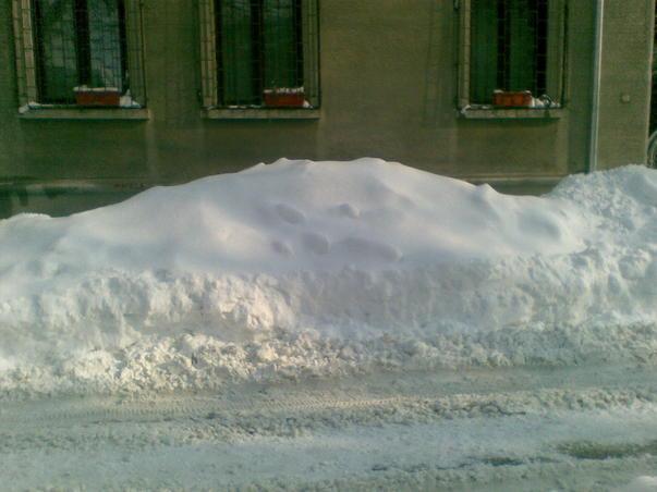 Iarna rara (2)
