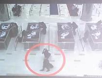 Suspectii detineau pasapoarte europene