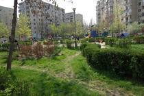 Parcul Emil Girleanu 2