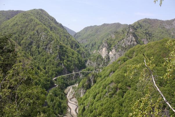 Valea Argesului