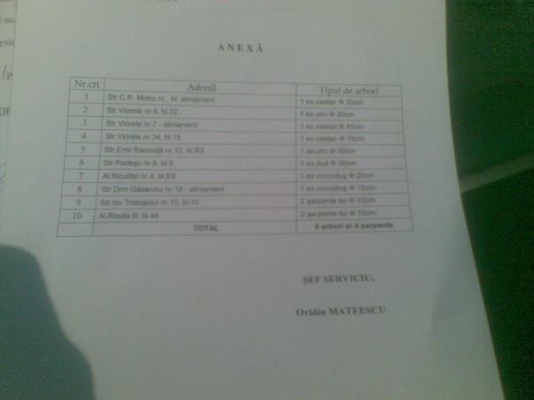 DUD TAIAT DE ADP SECTOR 4 FARA APROBARE (3)