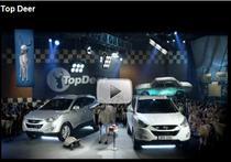 Spot Hyundai - Top Deer