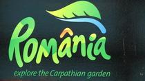 Logo-ul Romaniei