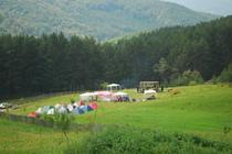 Festival la Muscel