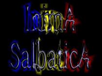 trupa de manele-rock Inima Salbatica
