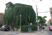 Casa acoperita de iedera in Bucuresti