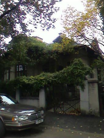Casa cu glicinia in Bucuresti