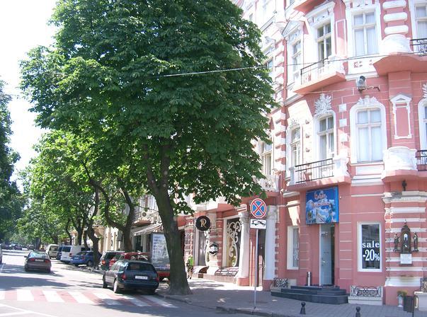Odesa,un oras care merita vizitat! (3)