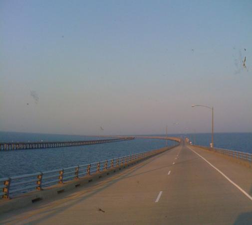 """bridge to nowhere"""