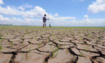 Seceta afecteaza mii de hectare de teren