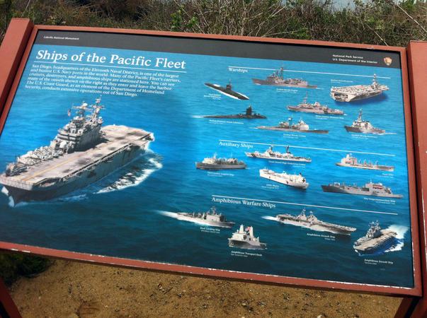 Mandria Flotei Pacificului (3)