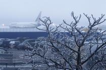 Ploaia inghetata a paralizat aeroportul Domodedovo