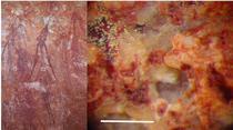 Picturile rupestre australiene sunt printre cele mai vechi din lume