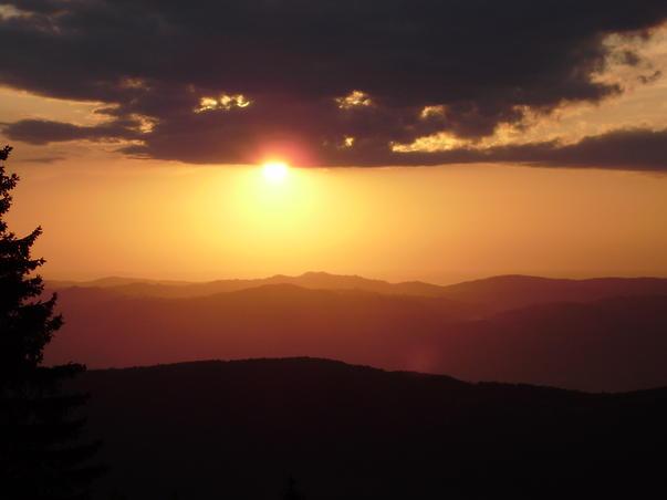 apus in munti