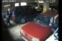 Sarutul din parcare