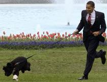 Obama si cainele sau